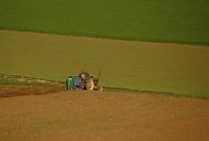 Přemysl Traktor a Oráč (_vlasy_)
