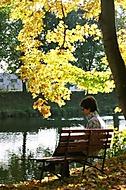 Podzimní zamyšlení (jobik)