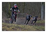 Bikejoring (zewag)