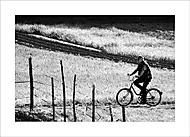 Muž na bicykli. (Ivan 76)