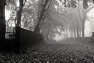 mlha přede mnou, mlha za mnou (Jarda.L)