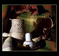 Podzimní zátiší se solničkou (Tarmin)