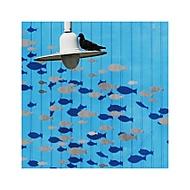 piranha (shimmell)