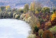 Jeseň (Werone)
