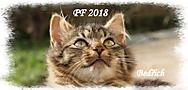 Vyhlížím nový rok (ejiskra)