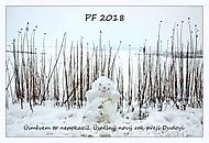 PF 2018 (ali111)