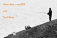 pf 2018 (shimmell)