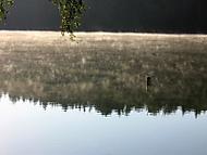 Ráno na přehradě (johnybf)