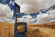 camino de santiago (maruschka)