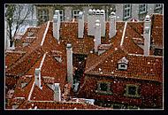 zasněžené střechy (anelim)