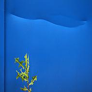 zelená a modrá (Jindra H)