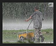 V dešti ... (asile)