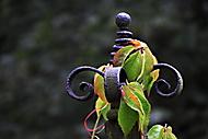 Podzim nastupuje (asile)