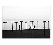 beach. (shimmell)
