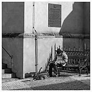 Muž. Jeho pes. Denní tisk. A klid. (Yes68)
