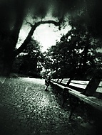 V parku (Kuba Adam)