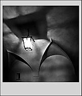 Hra stínů (babyvrba)