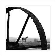 O koňském životě (šebin)