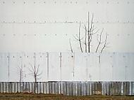 i za plotem se dá růst (vhumanik)