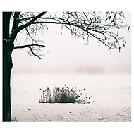 Zimná (Karol Ox)