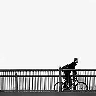 bridge-cyclist (_jiri_)