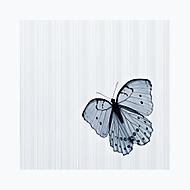 Motýl (ilonag3)
