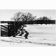 Zima si létá přes zásněžky, dech slunce nehřeje a jaro musí šlapat pěšky... (No21)
