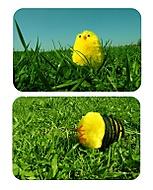 Velikonoce nebudou (.abused)